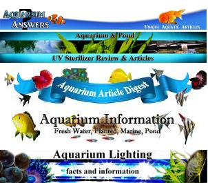 Unique, accurate aquarium information articles